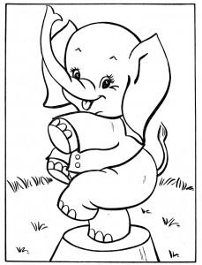 desenhos-para-colorir-elefante
