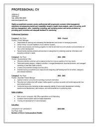 Modelo-de-curriculum-2015-vitae