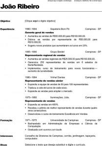 Currículo-Profissional-1